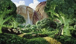 Food-Landscapes